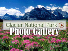 View Glacier National Park Photo Gallery
